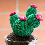 Cactus a crochet Tutorial