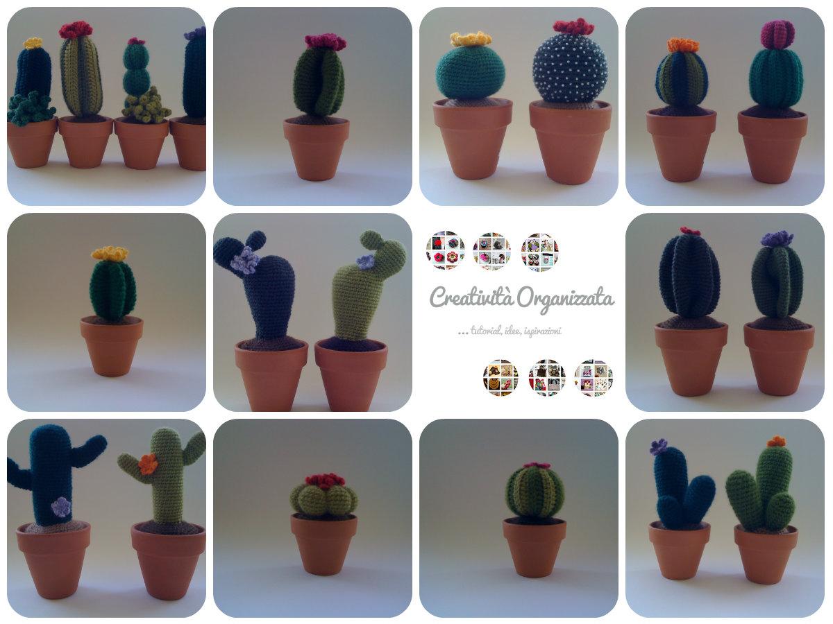 Cactus tondo medio - Per la casa e per te - Decorare casa - di ...   900x1200